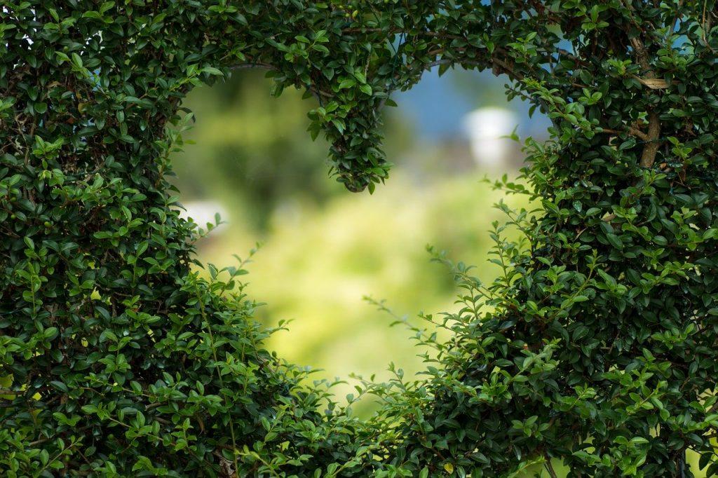 復縁のイメージを高める嵐の『復活LOVE』