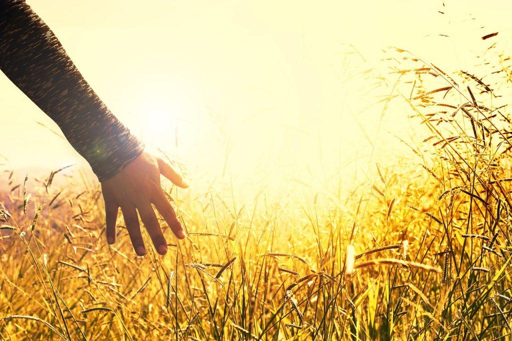 復縁に成功する人に共通する5つの特徴